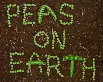 PEAS ON EARTH 8x12 Frameable Print