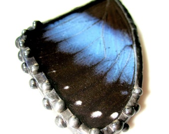 Butterfly Wing Jewelry, Butterfly Pendant, Morpho Achilles Fagardii