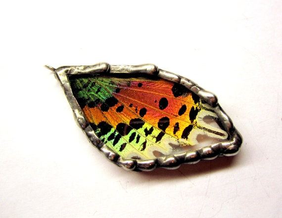 Madagascan Sunset Moth Pendant, Real Butterfly Jewelry