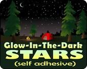 Glow in the Dark STARS / Ceiling Stars / Glow Dark Stars / Ceiling Decals / Ceiling Stickers / Realistic LONG Glow / Over 1000 Stars!