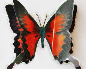 Large Beautiful Butterfly 3D Film Appliques