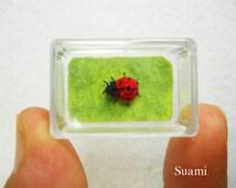 Micro Red Ladybug - Micro Crochet Miniature Ladybug - Made To Order