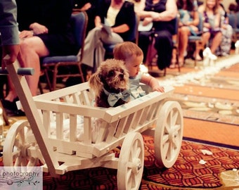 Medium Flower Girl Wedding Wagon - Unfinished