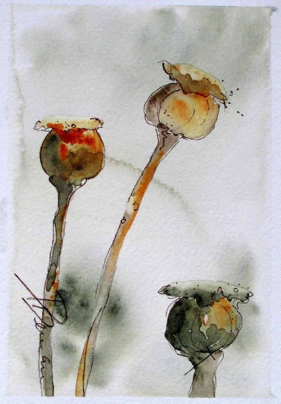 Seedpods Botanical Art Original Watercolor Painting