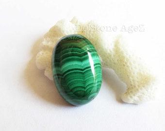 Lace Malachite -  13.50 Carats (Perfect Stone)
