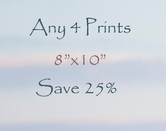 """25% Off - Select any Four 8""""x10"""" Fine Art Horse prints, photographs"""