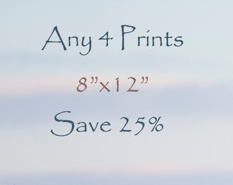 "25% Off - Select any Four 8""x12"" fine art horse prints - photographs - Horse Art"