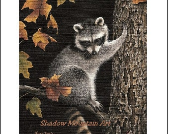 Art Print Raccoon Wildlife