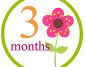 Baby girl iron on or sticker monthly decal transfers - flowers month to month