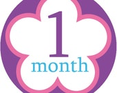 Baby girl monthly iron on or sticker decal transfers - pastel flowers month to month
