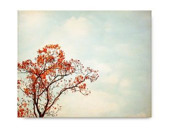 Autumn Tree Photography, orange red, landscape, branches, autumn leaves, blue sky, clouds, nature, country decor