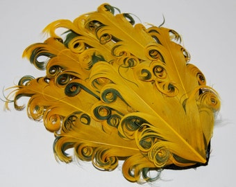 Curly Feather Pad - Two Tone Yellow on Green   FP198 - (1 piece)