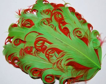Curly Feather Pad - Two Tone  Lime Green on Red  FP213 - (1 pc)  Christmas Holiday feather pads