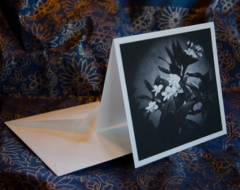 "One single 5 1/4 x 5 1/4 folded blank greeting/note cards, ""Living in the Spirit"""