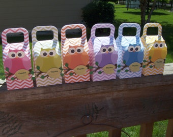 Owls in Rainbow Colors Favor Boxes  Set of 12
