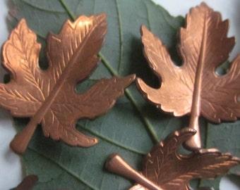 Vintage Ginger Brass Maple Leaf Stamping