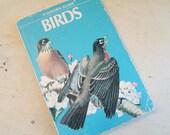 1956 Bird Guide