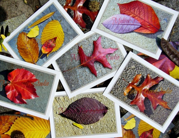 Fall Leaves Note Cards - Autumn Leaves with an Urban Twist - Set of 6