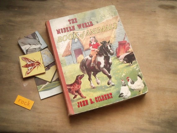 Vintage Children's book of Animals 1950s The Modern Book of Animals by John R. Gilbert
