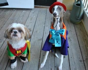 Special order handmade pet costume the joker Dog