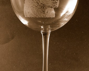 Etched Chesapeake Bay Retriever on Elegant Wine Glass (set of 2)