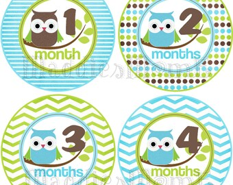 Monthly Baby Boy Stickers, Milestone Stickers, Baby Month Stickers, Monthly Bodysuit Sticker, Monthly Stickers (Austin Owls)