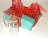DIY Bottle Necklace, Fill Your Own, Craft Project Kit, Message In A Bottle, Empty Glass Bottle, Bottle Jewelry, Keepsake Bottle, Craft Kit