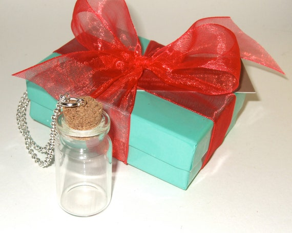 DIY Bottle Necklace, Fill Your Own, Craft Project Kit, Message In A Bottle, Empty Glass Bottle, Bottle Jewelry, Keepsake Bottle, Craft Kit