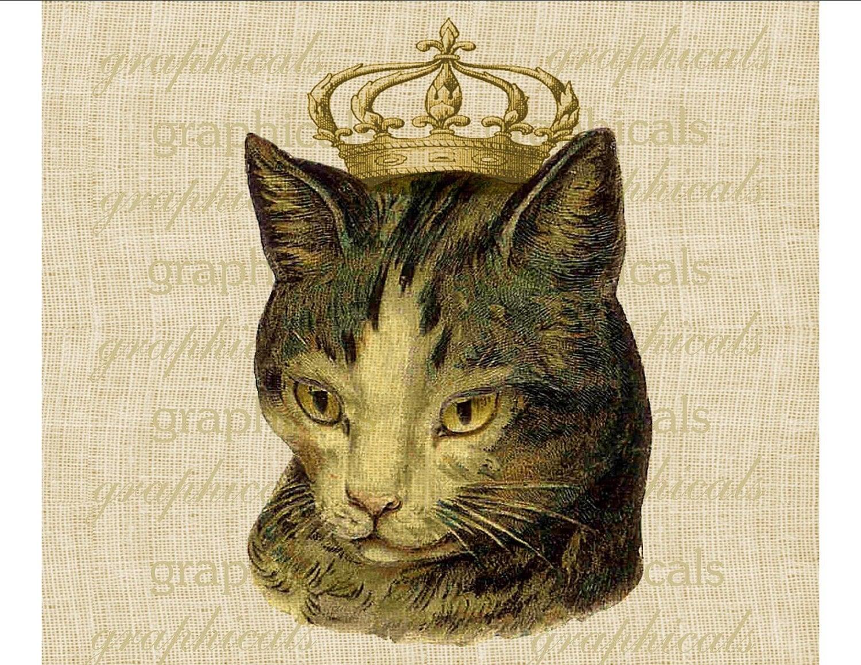 Vintage Cat 72