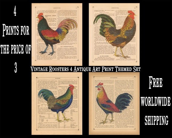 Items Similar To Vintage Rooster Themed Set 4 Antique Book Page Art Prints Kitchen Decor 8 X