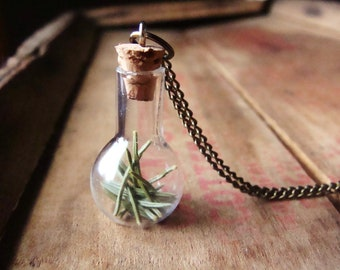 Pine Needles In Miniature Jar Necklace on Tarnished Bronze Chain
