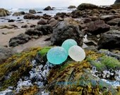 11 x 14 Beach Sea Glass Art Print Photo Print -D On the Rocks