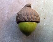acorn furniture knob, drawer pull