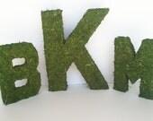 Woodland Wedding Moss Covered Letters - Monogram Wedding Letters - Wedding Decor