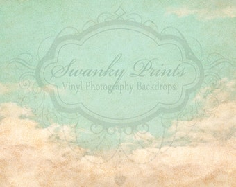 8ft x 7ft  Vinyl Photography Backdrop / Silver Lining Clouds