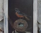 "Bird Vintage Nest Eggs Robin Cottage Chic Home Decor Shabby White Repurposed Hardware Spring Summer Farmhouse Prairie Nature 9"" x 15 1/2"""