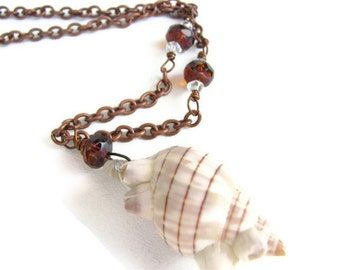 Sea Shell Necklace with Copper Chain - Shell Jewelry, Beach Jewelry, Rustic Boho Necklace, Barnacle Jewelry