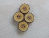 Natural Wood Buttons with Bark