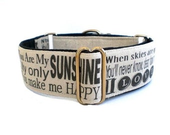 You Are My Sunshine Dog Collar - Martingale or Buckle Adjustable Collar