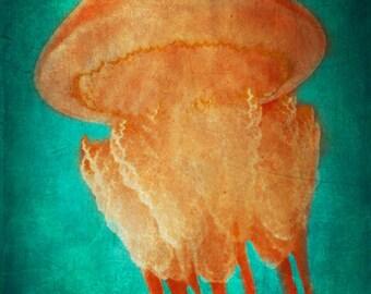 Jellyfish Art Print - Teal Aqua Orange Beach House Home Decor Nursery Childrens Room Ocean Art Photo Vintage Photograph