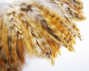 Natural Rooster hackle Feathers GINGER VARIANT for jewelry making, hair extensions, millinery, crafts, decor, 4-6 in (10-15 cm) long / F13-4