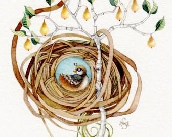 partridge pear tree nest watercolor painting OOAK original