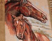 Portait of a Horse