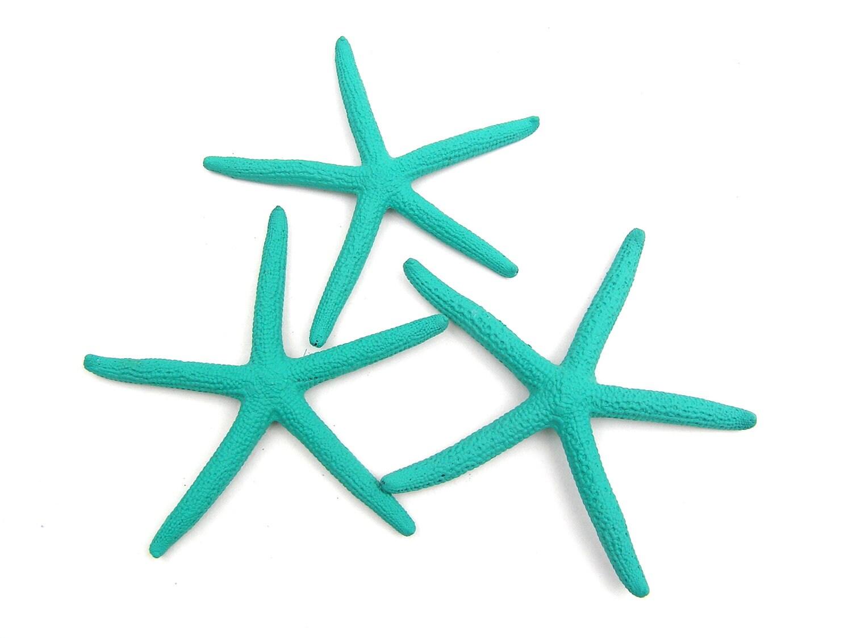 3 4 In Aqua Blue Starfish 6 Pcs Hand Painted By Ashorething1