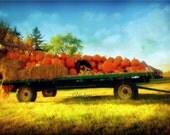 Harvest Barn  - Pumkins on cart. Blue, yellow and oragne- Dreamy photography. Halloween, Thanksgiving, Fall decor. Kids decor.