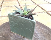Mod Clay Triangle Herb and Minimalist Flower Pot with Bubbles in Patina.