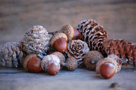 basket filler, glitter real pine cones and real acorns with Birch bark,  fairy garden mix, sparkly, decoration for wedding