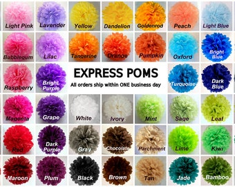 Tissue Paper Pom Poms - 5 Small Poms - Ships within ONE Business Day - Tissue Poms - PomPom - Tissue Pom Poms - Choose Your Colors!