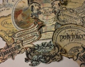 Harry Potter Potion Labels and Handmade Stickers: Polyjuice Potion, Veritaserum, Felix Felicis, Essence of Dittany Large Lot of TEN