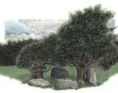 Dromatouk Five-Stone Circle/ Droim an tSeabhaic Ciorcal Cuig-Liag, Card Print